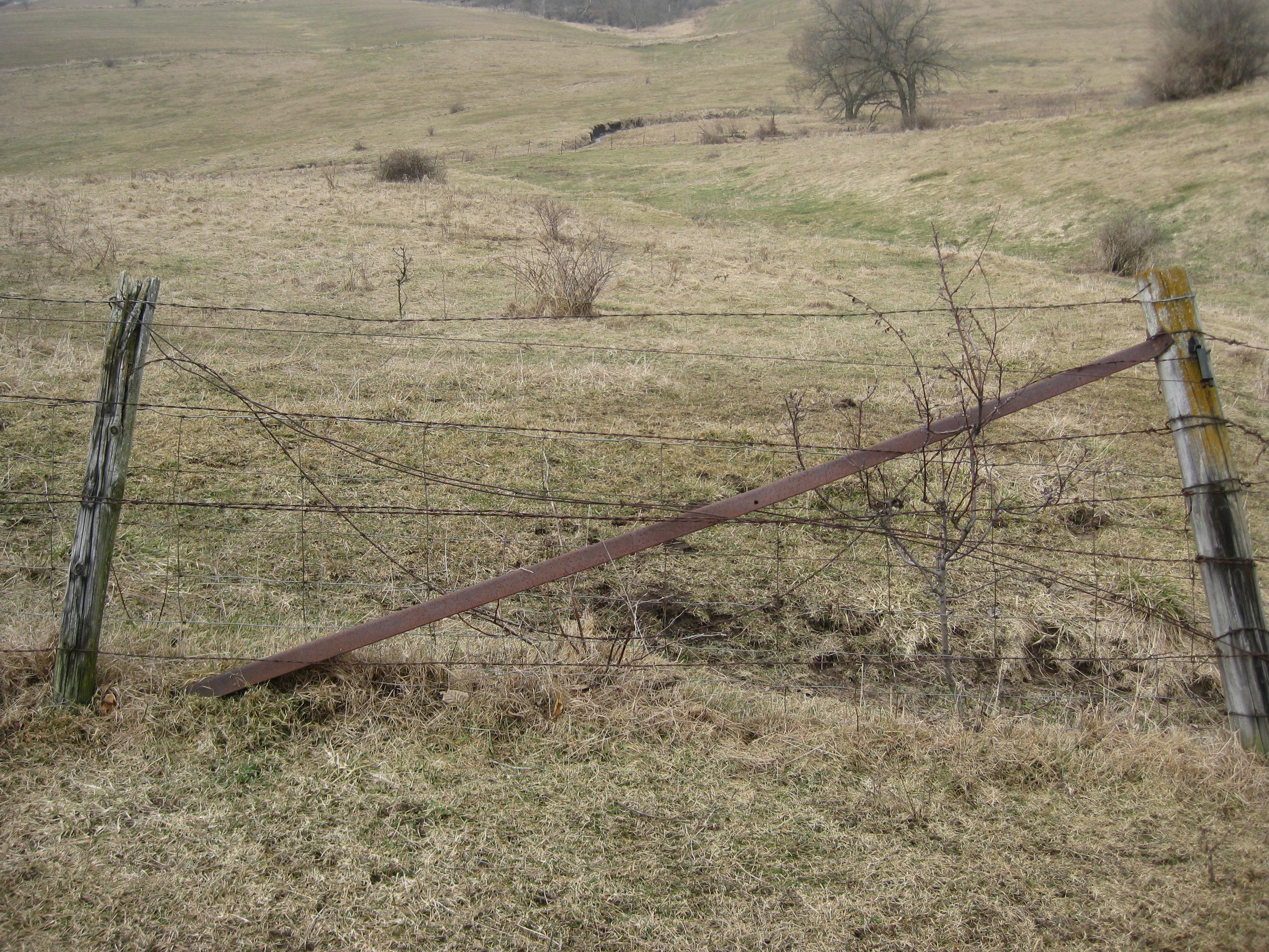 Tearing out fence curiousfarmer