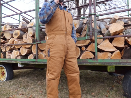 Dickies Insulated Bib Overalls